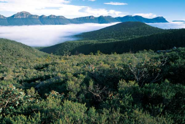 Grampians One Day Tour