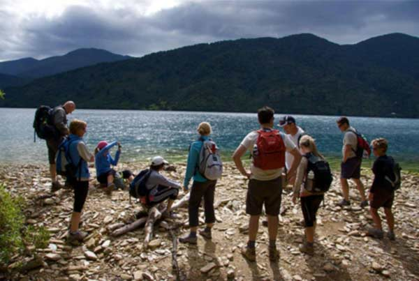 NZ Queen Charlotte Track 7 Day Hike + Retreat